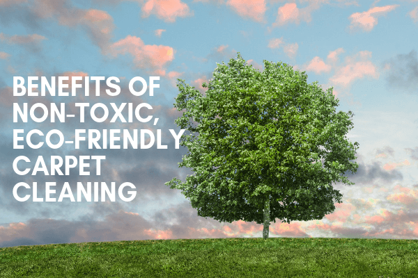 Benefits Of Non-Toxic, Eco-Friendly Carpet Cleaning