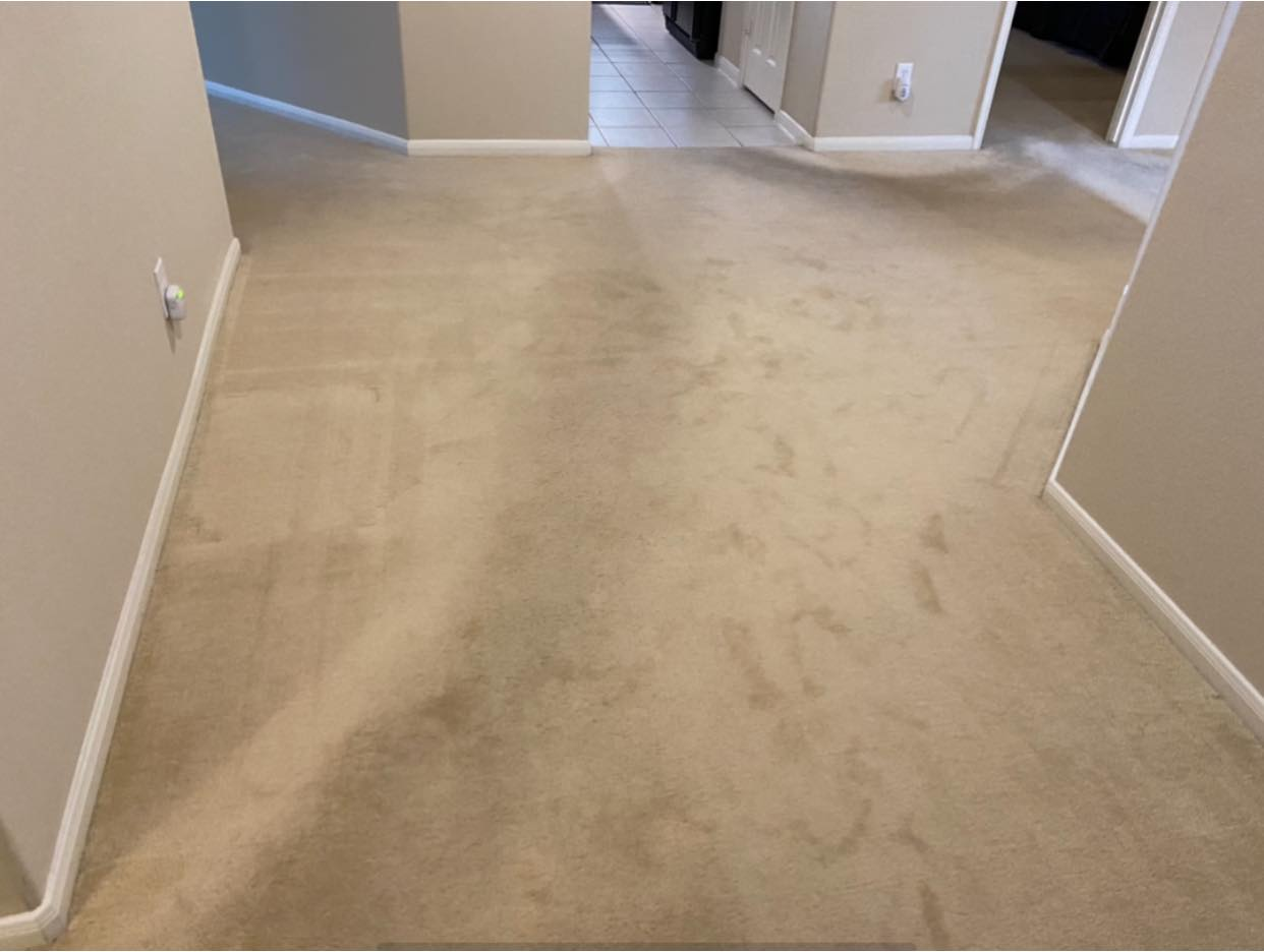 before carpet cleaning in friendswood
